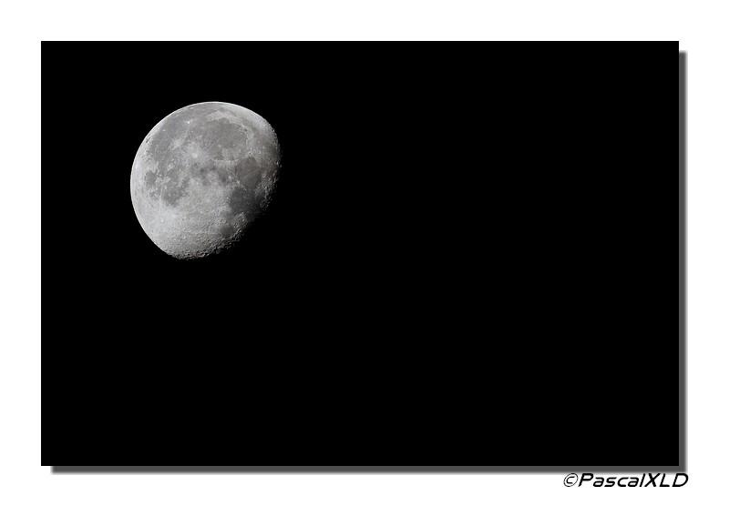 Balades photo de pascal for 2015 jardin lune